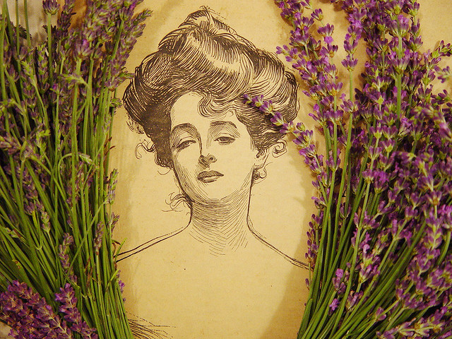 22 Uses For The Lovely Lavender Essential Oil