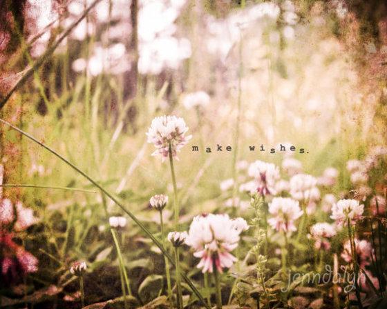 Clover field spring flowers 8 x 10 fine art photograph pink green